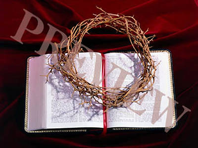 Download Still Bible, Crown of Thorns with Red Background