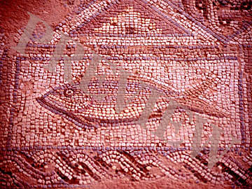 Download Still Fish Mosaic