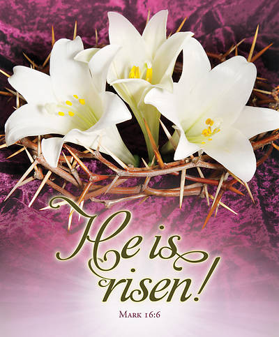 He is Risen Easter Legal Size Bulletin