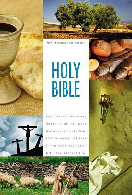 NIV Holy Bible, Textbook Edition