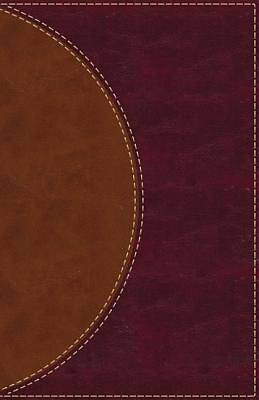 Amplified Reading Bible, Imitation Leather, Brown, Indexed