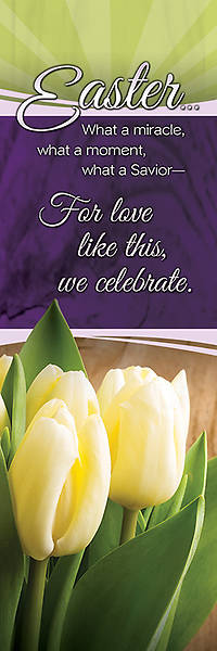 Easter Bookmark Matthew 28:6, Package of 25