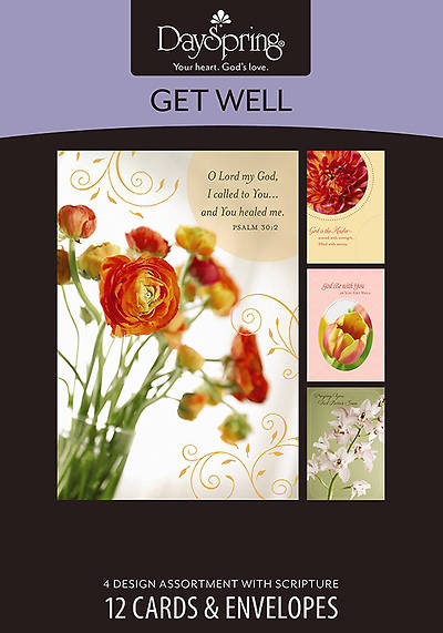 Budding Hope - Get Well Boxed Cards - Box of 12