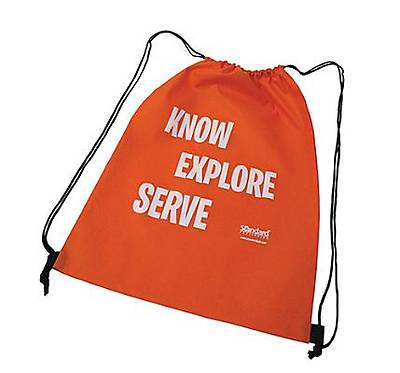 Standard VBS 2014 Jungle Safari Economy Pack