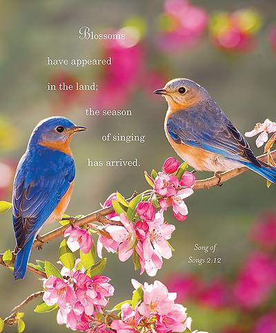 Birds Spring Bulletin 2014, Large (Package of 50)