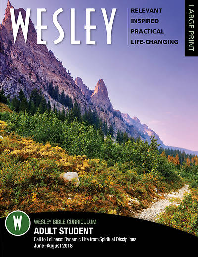 WESLEY ADULT BIBLE STUDENT LARGE PRINT SUMMER