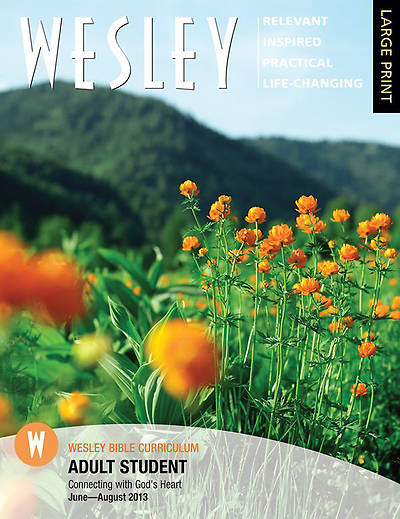 Wesley Adult Bible Student Large Print Summer 2013