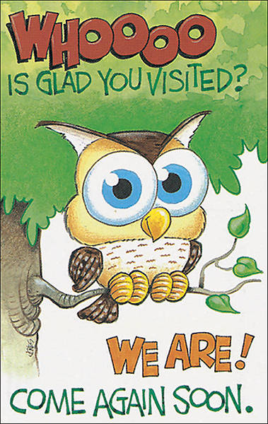 Owl Visitor Postcard - Pack of 25