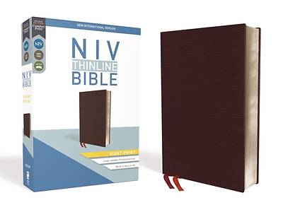 NIV, Thinline Bible, Giant Print, Bonded Leather, Burgundy, Red Letter Edition