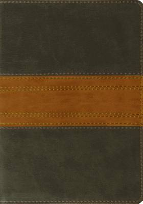 ESV Large Print Bible (Trutone, Forest/Tan, Band Design)