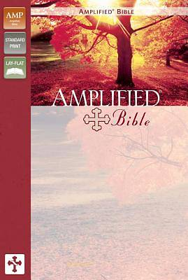 Bible Amplified Text