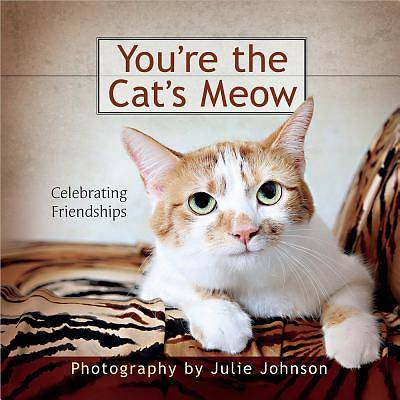 Youre the Cats Meow
