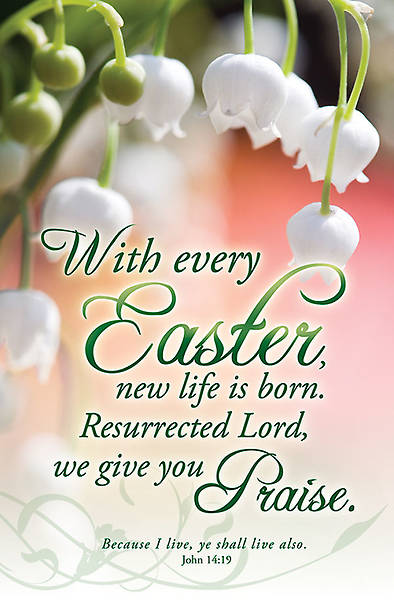 Easter Bulletin John 14:19, Regular Size Package of 100