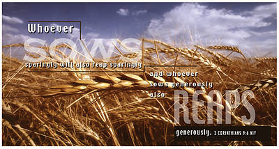 Wheat Fields, Special 4-Color Offering Evelopes
