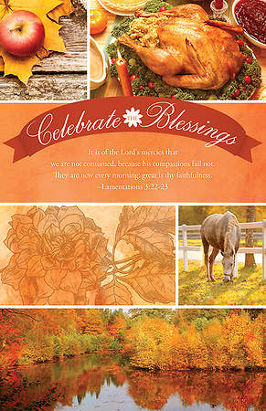 Celebrate the Blessings: The Lord's Mercies