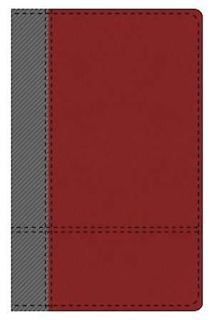 KJV Study Bible Student Edition--Indexed (Gray/Maroon)