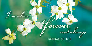 I'm Alive Easter Dogwood Offering Envelope 2015 (Package of 50)
