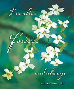 I'm Alive Easter Dogwood Bulletin 2015, Large (Package of 50)