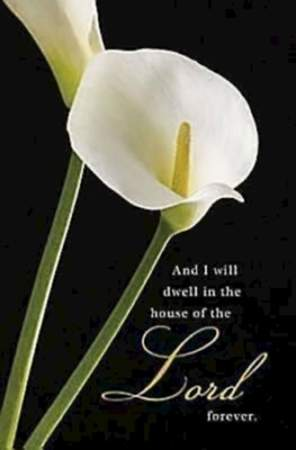 Calla Lilies Funeral Bulletin, Regular (Package of 50)
