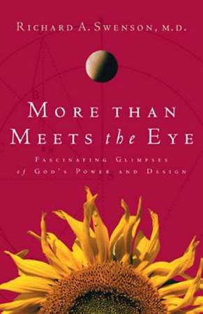 More Than Meets the Eye [ePub Ebook]