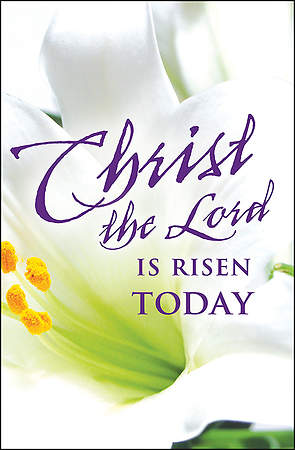 Christ the Lord Easter Lilies Bulletin 2015, Regular (Package of 50)