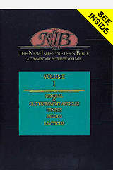 New Interpreter's Bible Volume I
