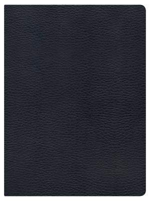 Holman Study Bible NKJV Edition