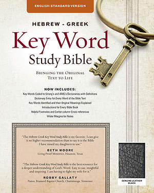 Hebrew-Greek Key Word Study Bible - ESV