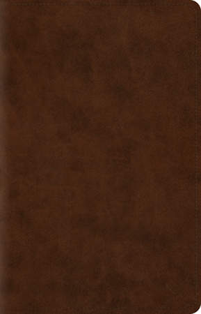 ESV Wide Margin Reference Bible (Trutone, Brown)