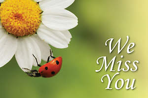 We Miss You Ladybug Postcard (Package of 25)