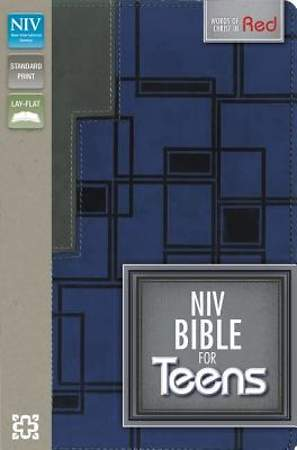 NIV Bible for Teens