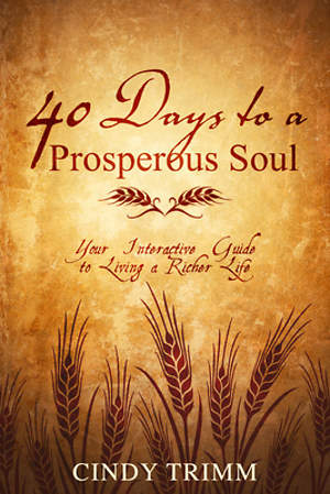 40 Days to a Prosperous Soul