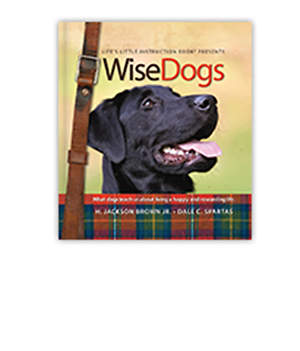 WiseDogs