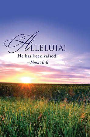 Alleluia! Easter Sunrise Bulletin 2013, Regular (Package of 50)