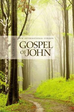 NIV Gospel of John, Large Print