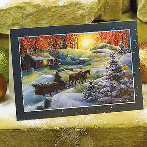 Beauty of the Season Boxed Card - Box of 20