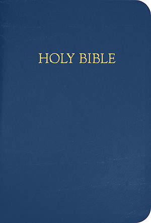 Cokesbury NRSV Gift and Award Bible