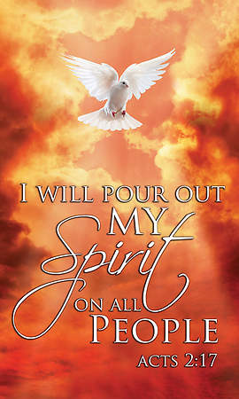 Acts 2:17 Pentecost Banner with Dove and Flames 3'x5'