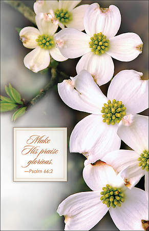 Bulletin Easter Dogwood Regular Package 100