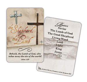 The Shepherd The Lamb Pewter Finish Pin and Card, Package of 3