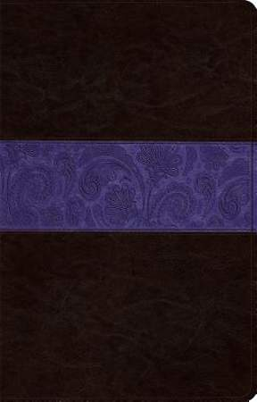 Large Print Thinline Reference Bible-ESV-Paisley Design