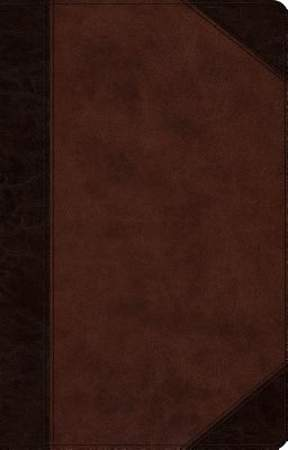ESV Large Print Thinline Reference Bible (Trutone, Brown/Walnut, Portfolio Design)