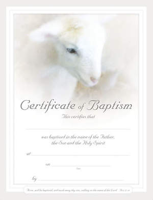 Certificate Baby Baptism Lamb Package of 6