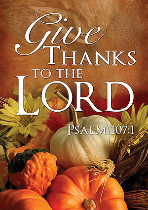 Fall Thanksgiving Banner Give Thanks 3x5