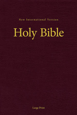 NIV Holy Bible, Large Print