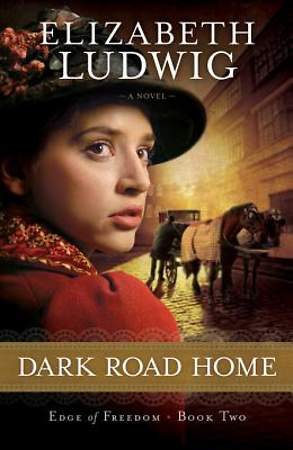 Dark Road Home - eBook [ePub]
