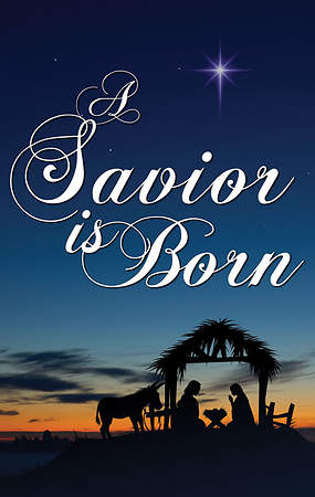 Nativity Series Savior Is Born Banner 3' x 5'