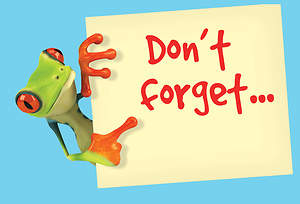 Don`t Forget Frog Postcard (Package of 25)