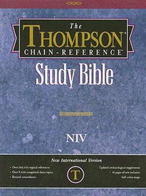 Text Bible-NIV