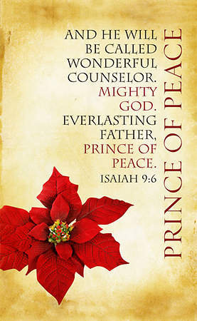 Christmas Parchment Series Prince of Peace Banner 4'x6'